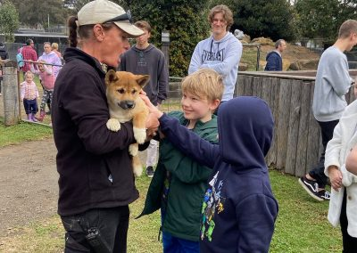 Kids patting a dingo pup at Hunter Valley Zoo